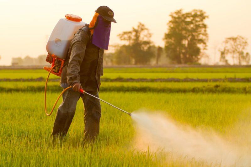 Los plaguicidas y herbicidas usados en zonas de cultivos afectan tanto el suelo como el subsuelo.